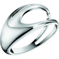Ladies Calvin Klein Stainless Steel Small Shade Bangle