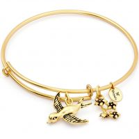 Ladies Chrysalis Gold Plated Spirited Sparrow Expandable Bangle CRBT1210GP