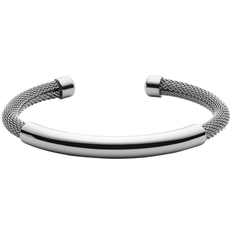 Ladies Skagen Stainless Steel Elin Bangle SKJ0926040