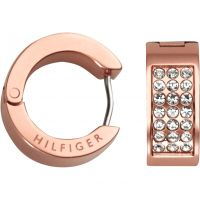 Gioielli da Donna Tommy Hilfiger Jewellery Earrings 2700573