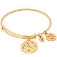 Biżuteria damska Chrysalis Taurus Expandable Bangle CRBT1302GP