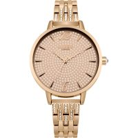 Ladies Lipsy Watch LPLP532