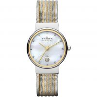 Damen Skagen Ancher Watch 355SSGS