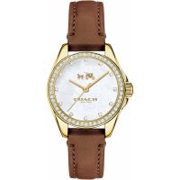 Damen Coach Tristen Watch 14502314
