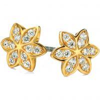 Ladies Fiorelli Sterling Silver Earrings E4856C