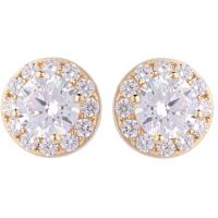 Ladies Essentials 9ct Gold Cubic Zirconia Halo Earrings AJ-15040170